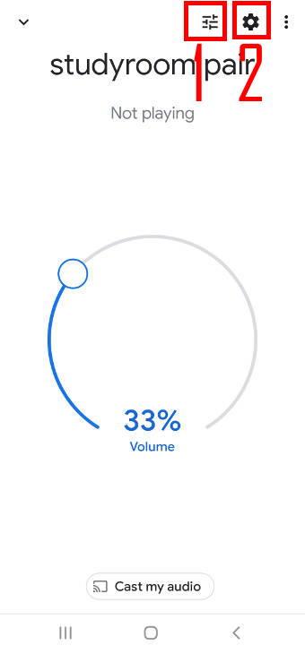 manage Google Home speaker pair settings