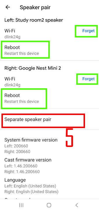 separate Google Home speaker pair