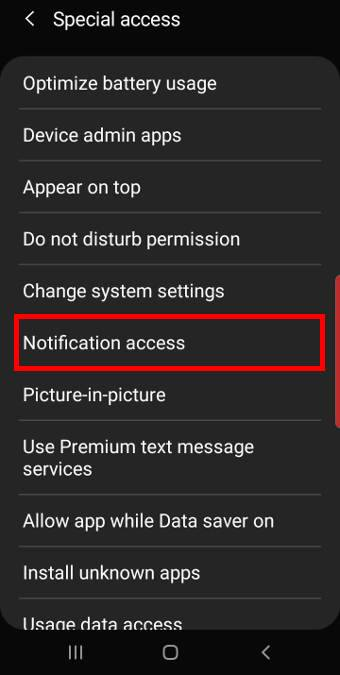 galaxy s10 special access setttings