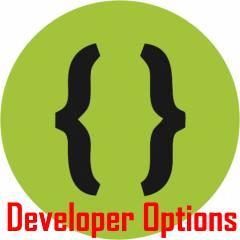 Galaxy S10 developer options