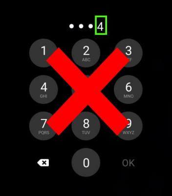 password is displayed