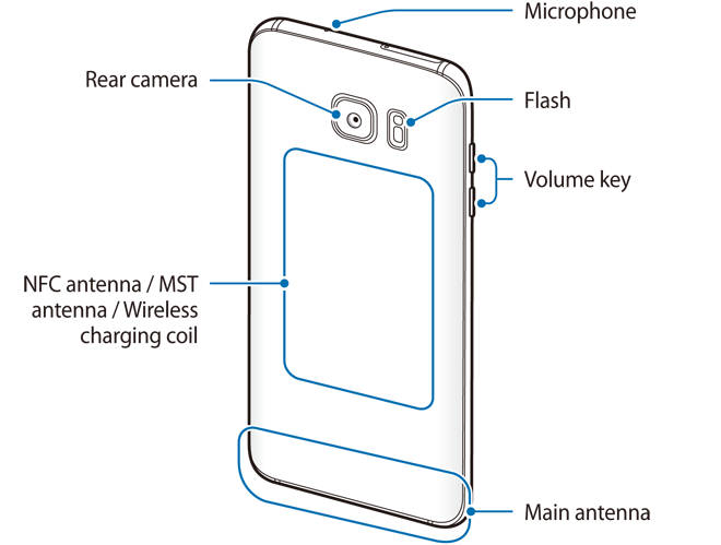 Rear view of Galaxy S7 layout and Galaxy S7 edge layout