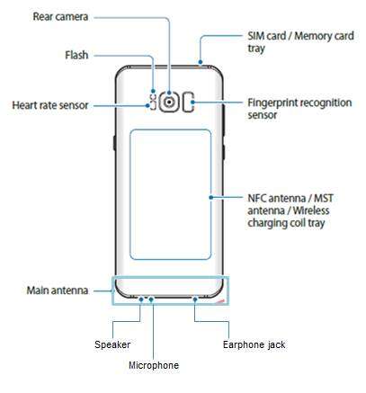 Galaxy S8 layout: rear view