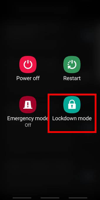 enable the lockdown modeon Galaxy S9 and S9+ with Android Pie update
